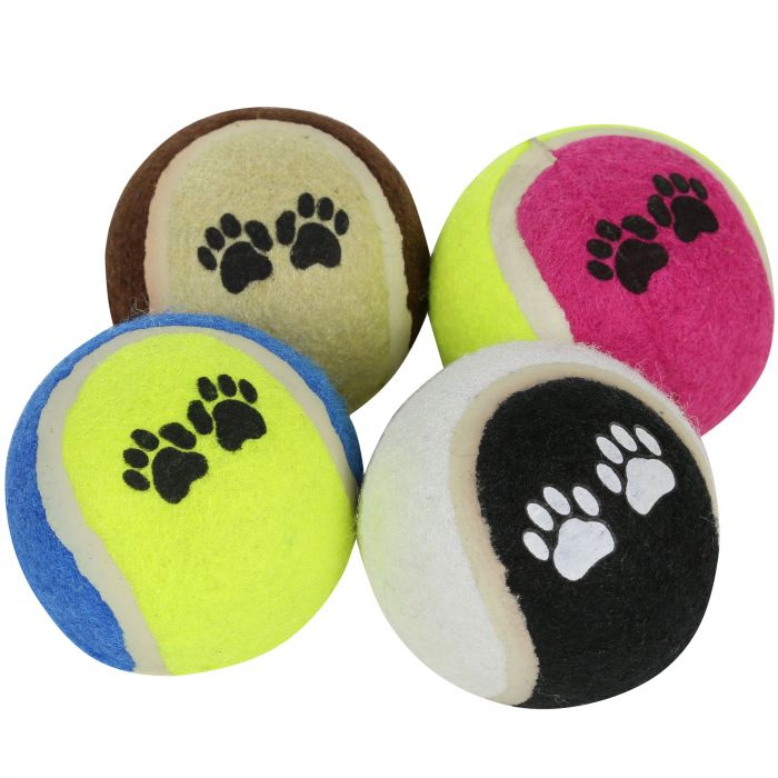 Fetch Ball Set 6cm Diameter