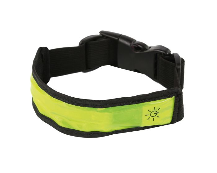 LED Dog Collar Fluro Yellow