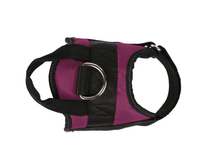 Reflective Dog Harness Azalea Regatta Regatta Great