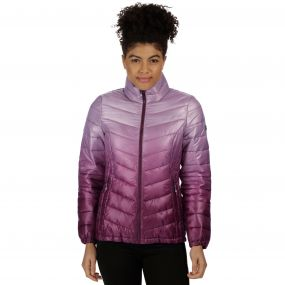 Women's Azuma Atomlight Heavyweight Insulated Jacket Fig
