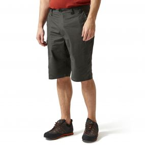 Kiwi Long Shorts Black Pepper
