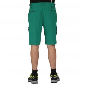 Tuned In Shorts Ulmar Green