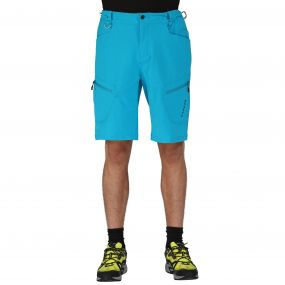 Tuned In Shorts Fluro Blue