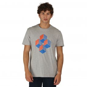 Quixotic T-Shirt Ash Grey Marl