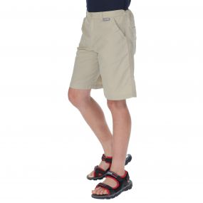 Sorcer Shorts Fossil