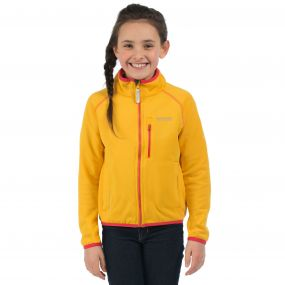 Limit Softshell Jacket Glowlight