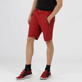 Leesville Lightweight Chino Shorts Delhi Red