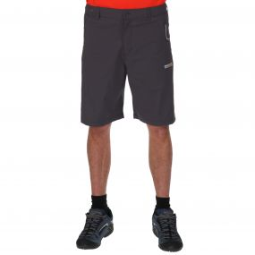 Fellwalk Shorts II Seal Grey
