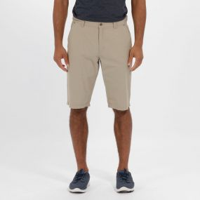 Salvador Coolweave Cotton Twill Chino Shorts Parchment
