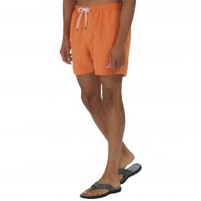 Mawson Swim Shorts Carrot