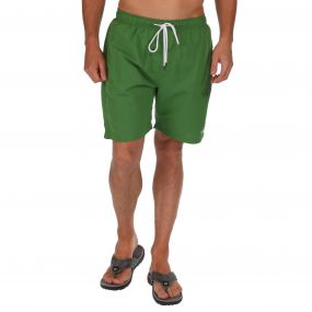 Mawson Swim Shorts Alpine Green