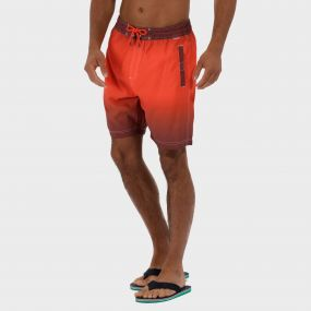 Hotham Board ll Swim Shorts Warm Mahogamy Amber