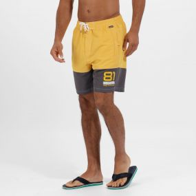 Brachtmar II Swim Shorts Old Gold Iron
